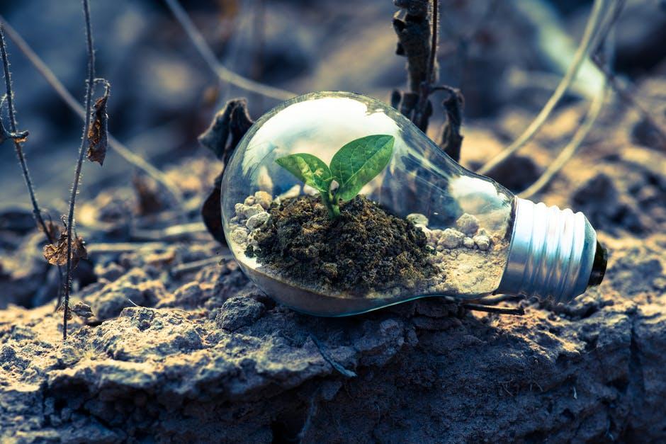 Mannheim 2020 la conferenza europea sulle città ecosostenibili